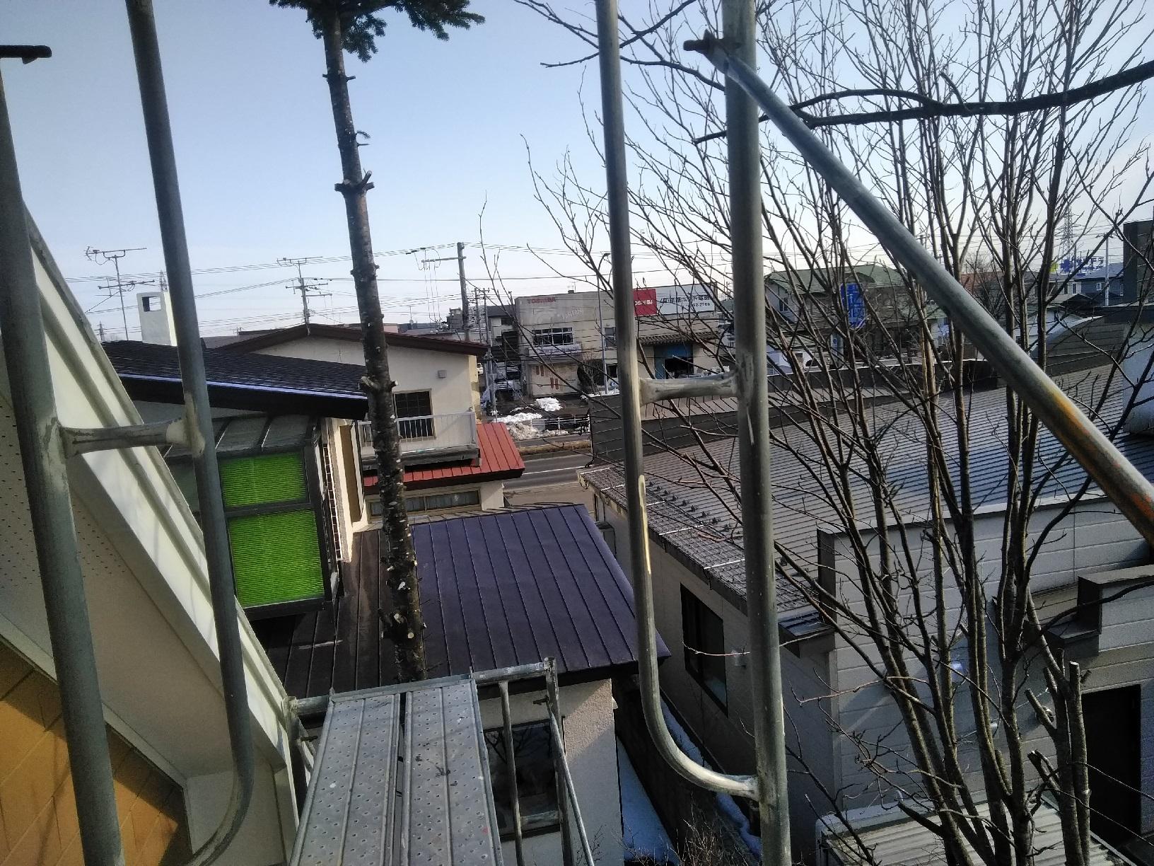 昭和M様貸家 木の伐採1