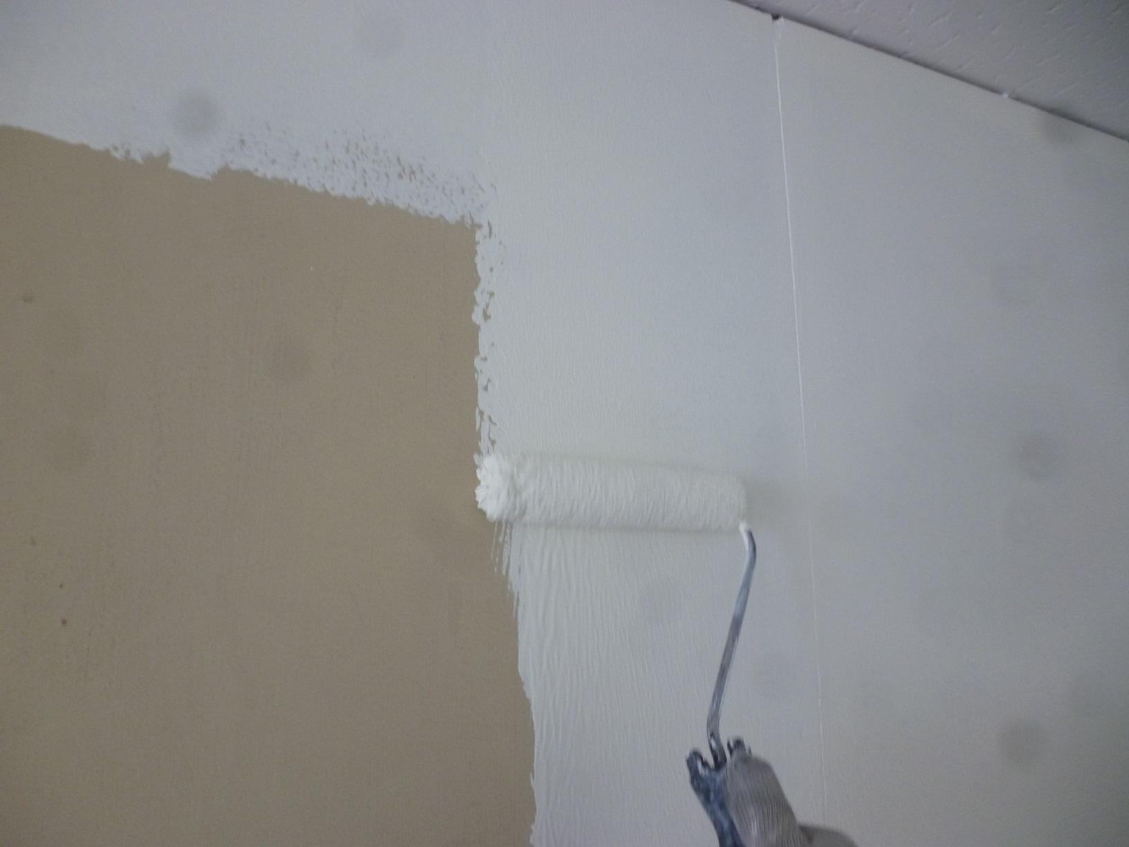 丸中青果 会議室  壁 上塗3