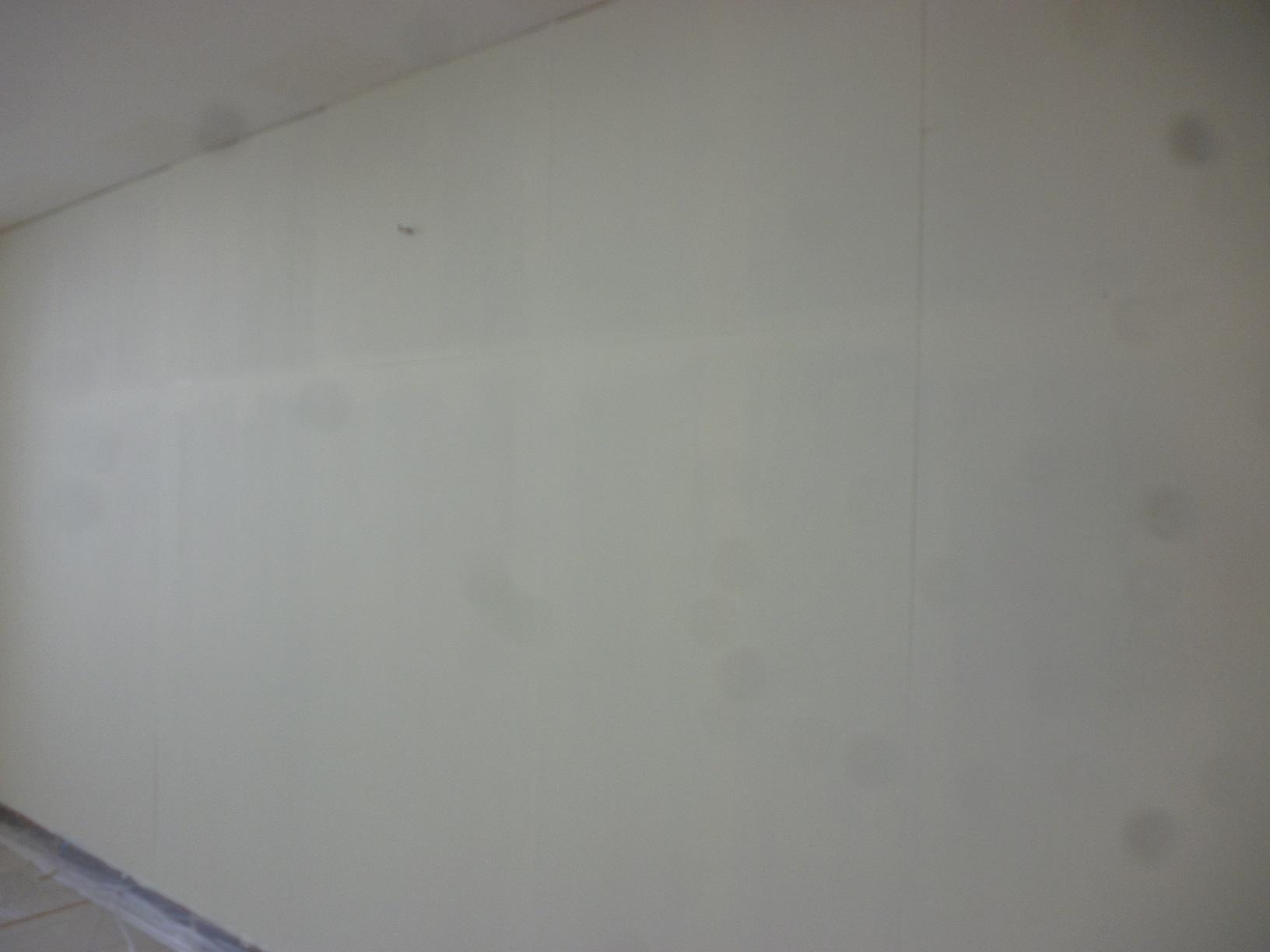 丸中青果 会議室  壁 上塗4